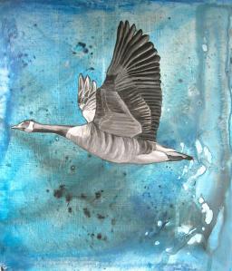 wild-goose-2-alison-hoffman